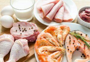 Waarom zijn eiwitten zo belangrijk tijdens het afvallen?